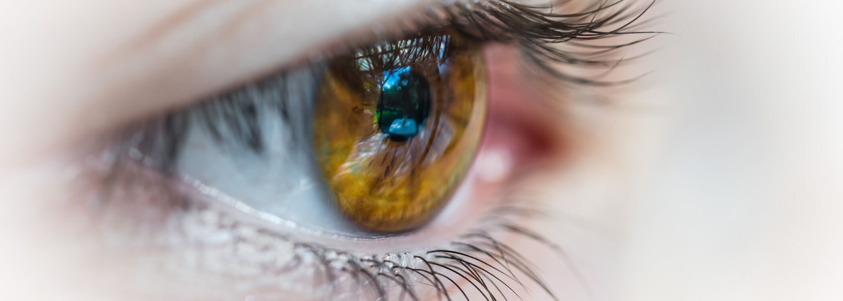 ojo tobracina oftálmica