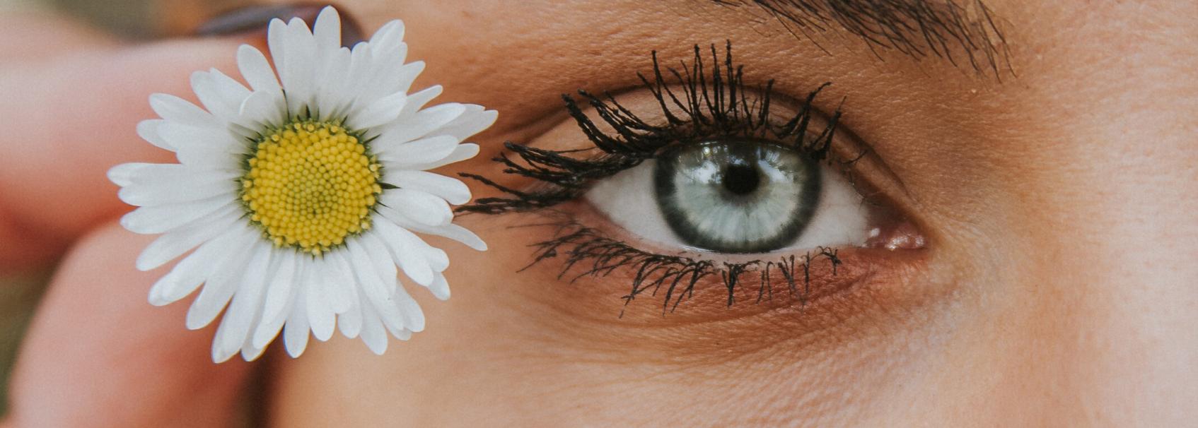 tratamientos para todo tipo de cejas